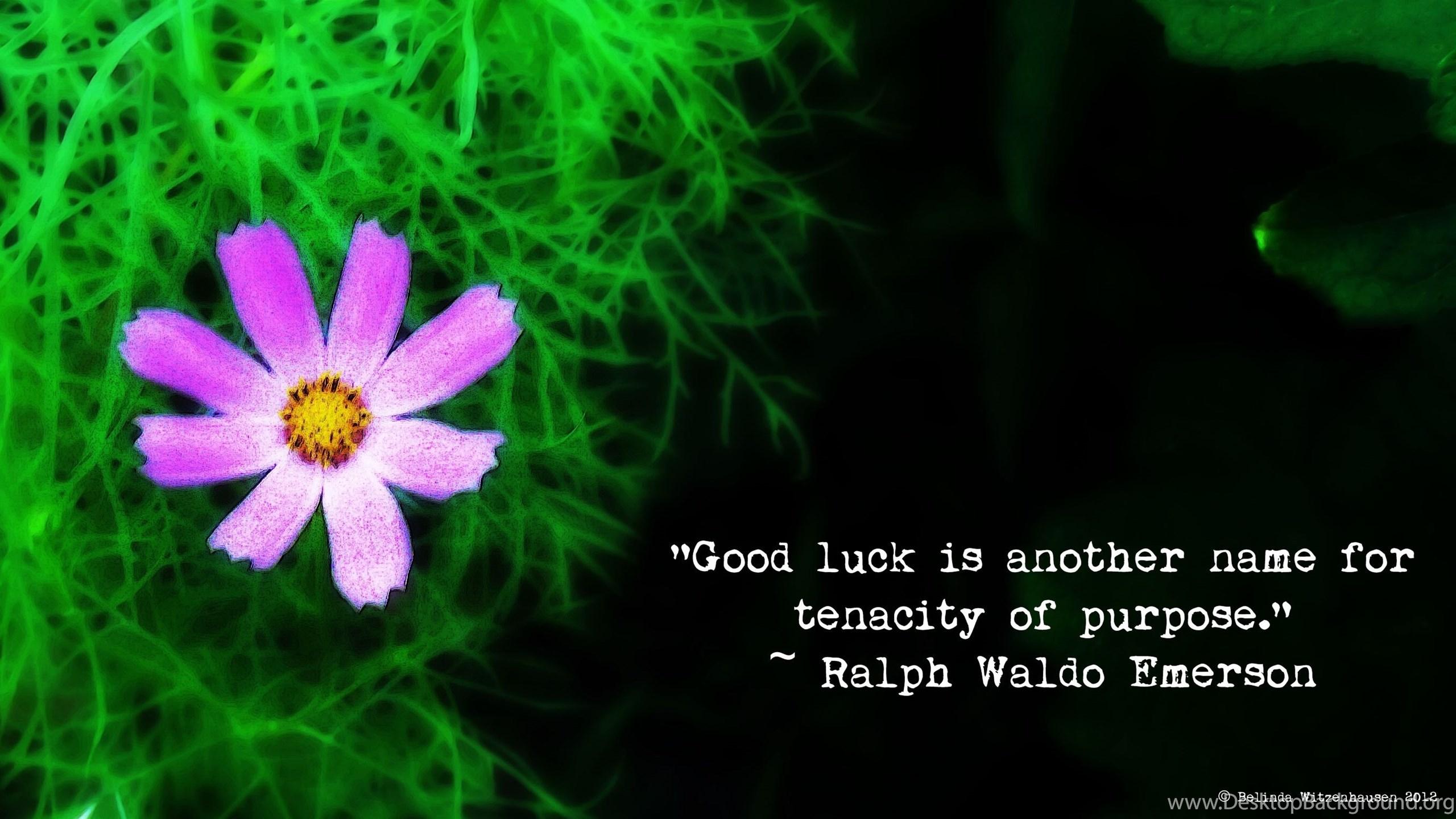 Good Luck Desktop Background