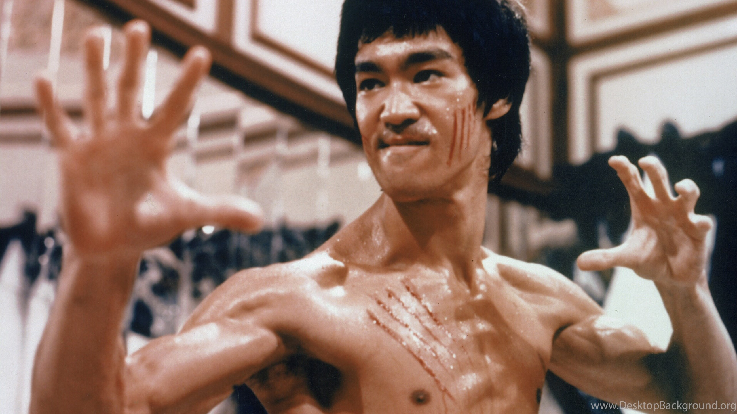 Beautiful Wallpaper Movie Warrior - 483925_enter-the-dragon-bruce-lee-martial-arts-movie-warrior-r-wallpapers_3826x3000_h  Best Photo Reference_619864.jpg