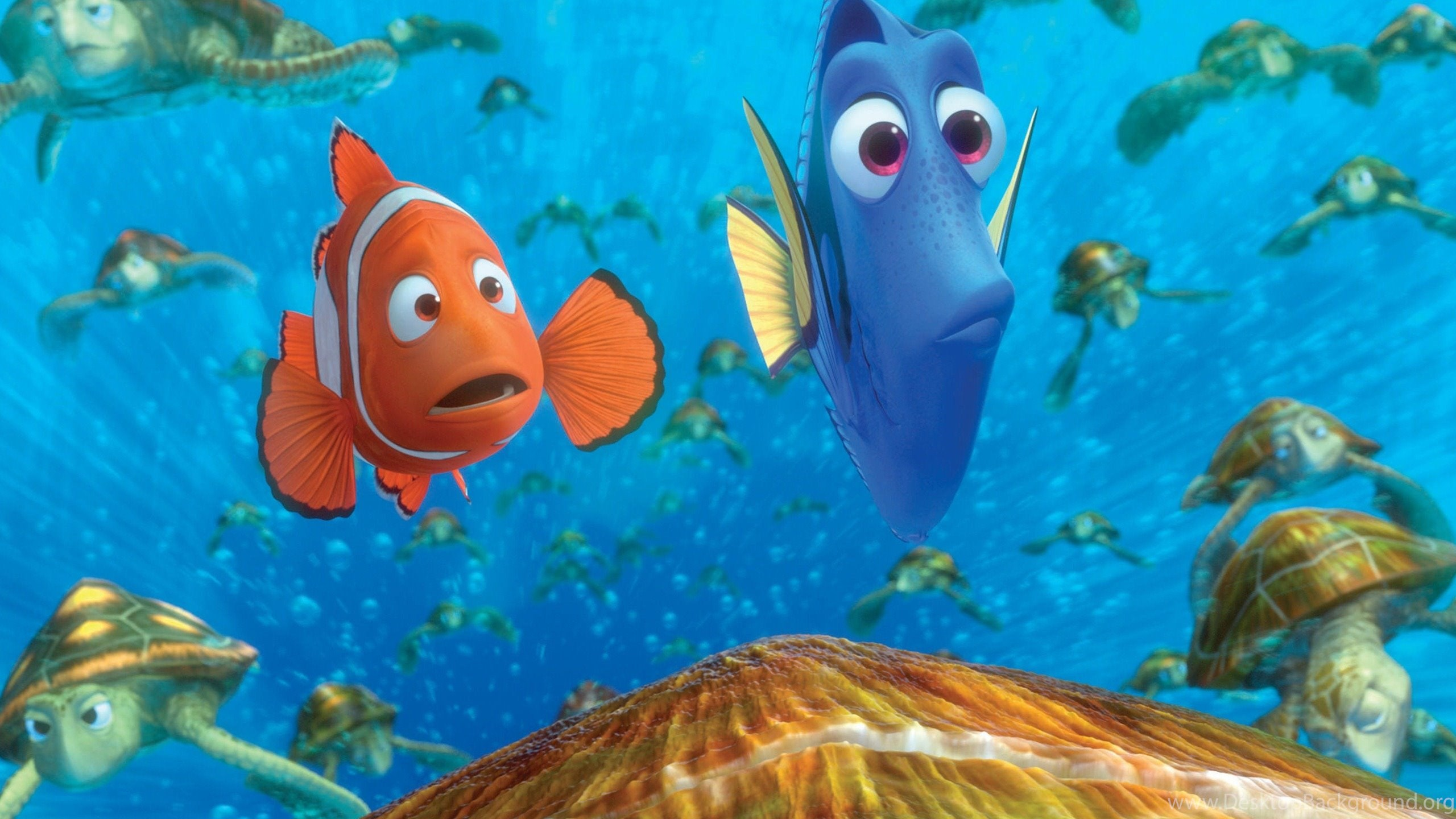 Finding Nemo 3D Movie HD Desktop Wallpapers 10 2560x1600