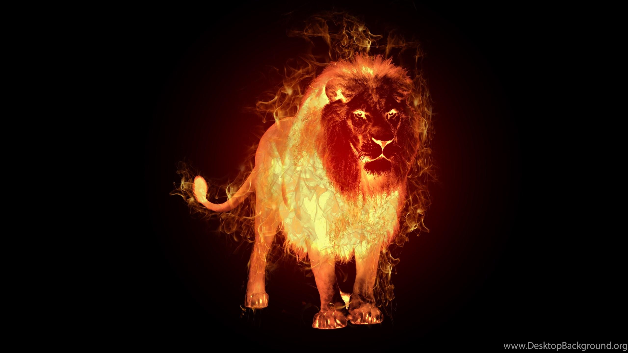 509671 fire lion bing