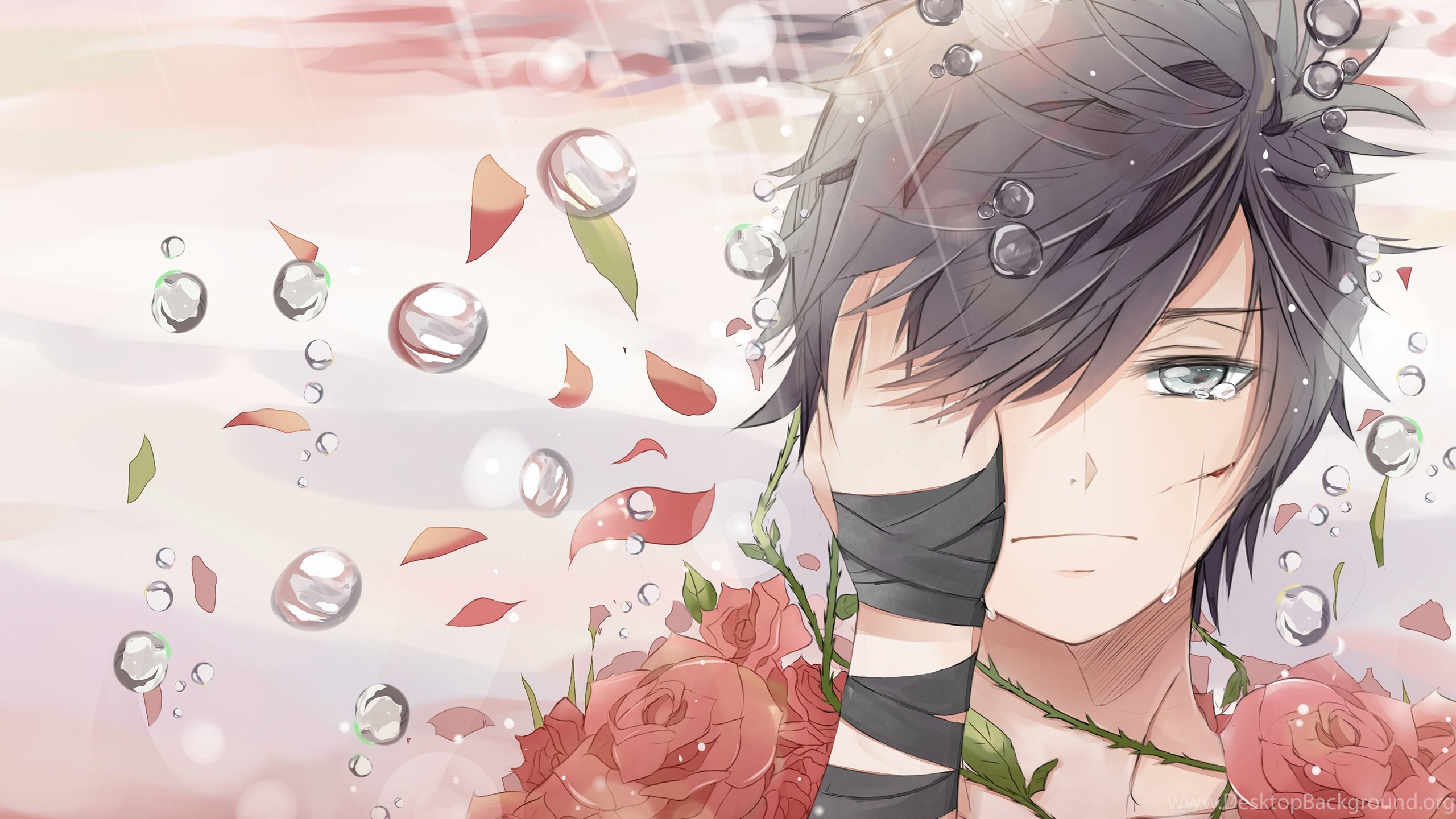 519913 sad boy covered in roses wallpapers anime