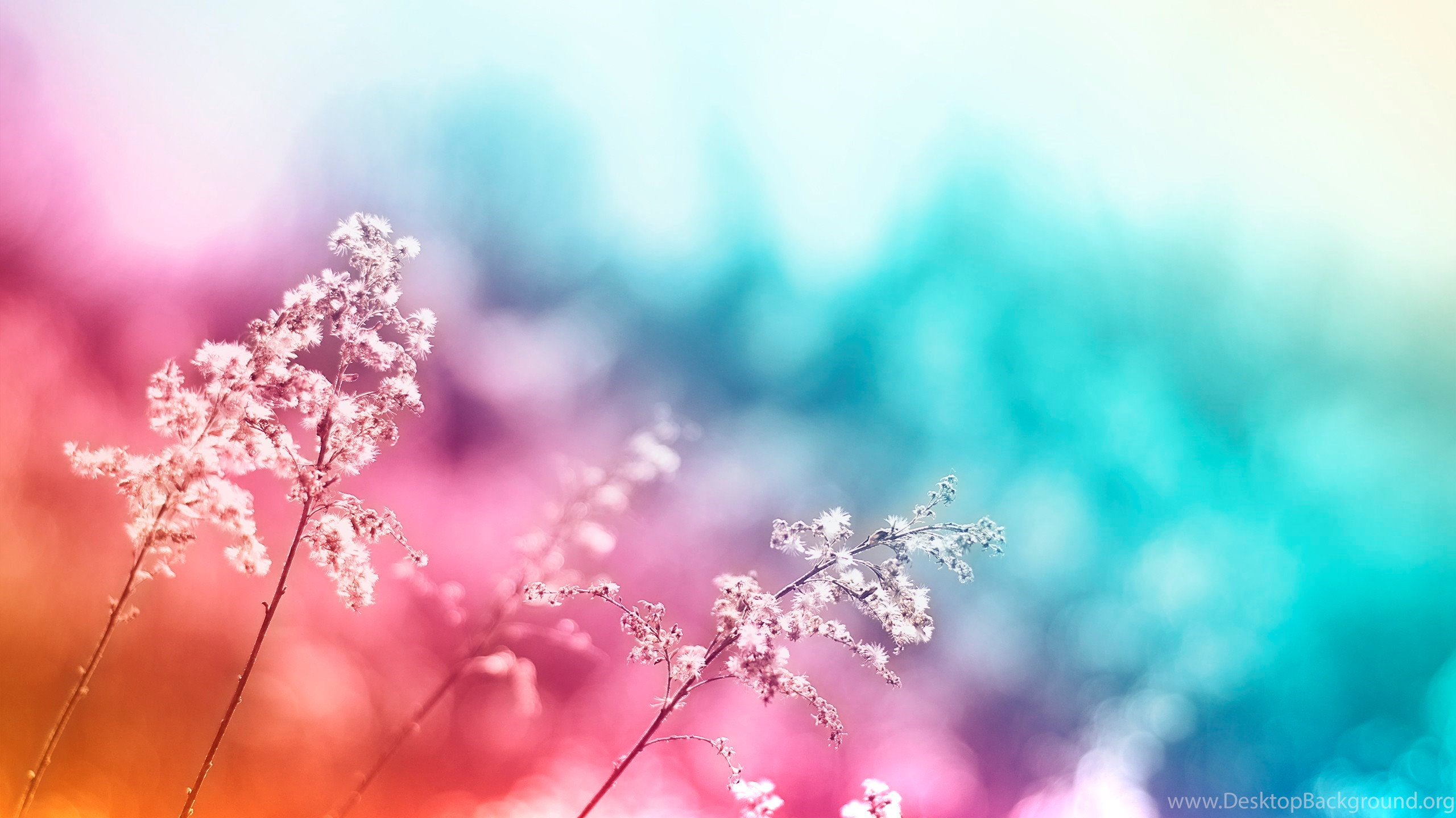 Pretty Backgrounds For Tablet Colorful Images Wallpaper