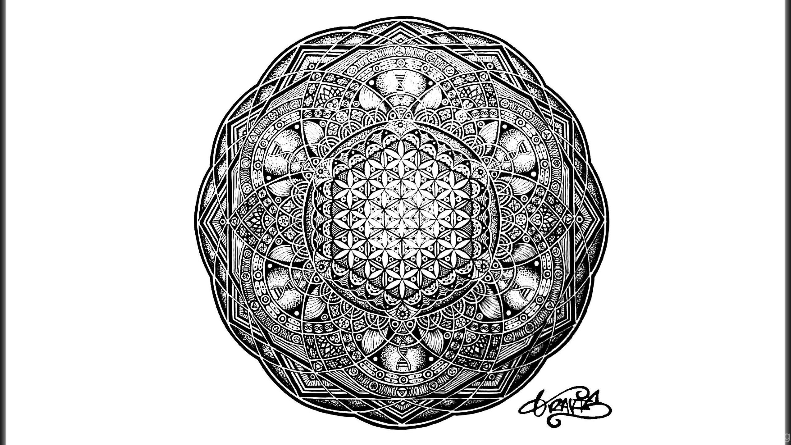 I Created A Sacred Geometry Wallpapers From A Recent Post Info In