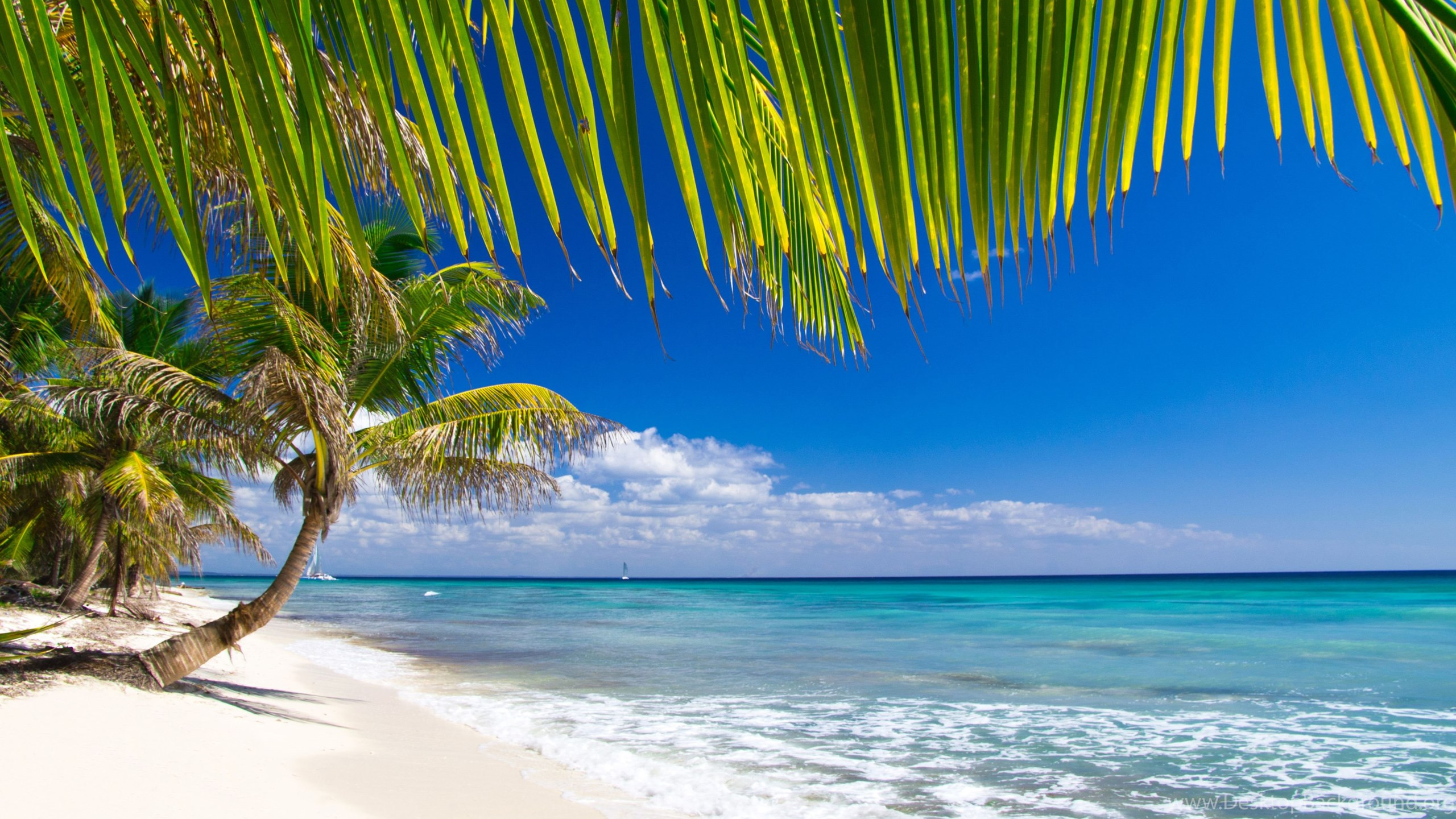 caribbean beach awesome wide wallpapers desktop background