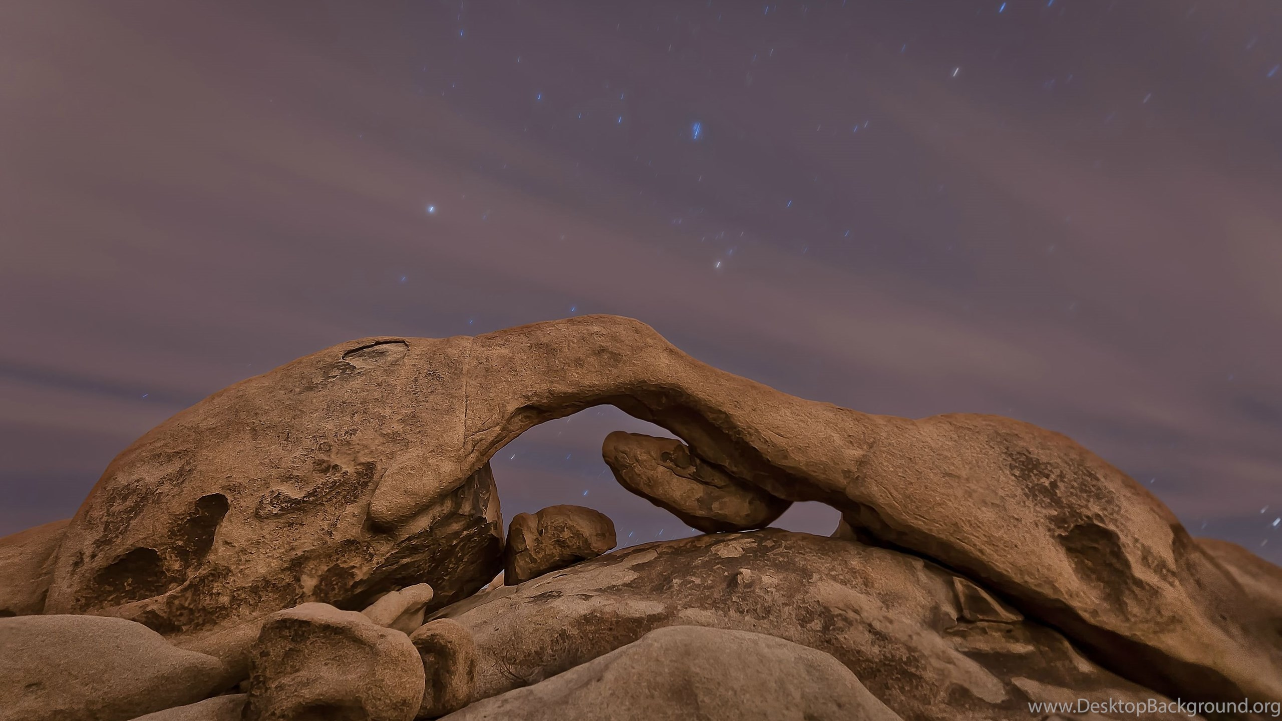 joshua tree national park night wallpaper. desktop background