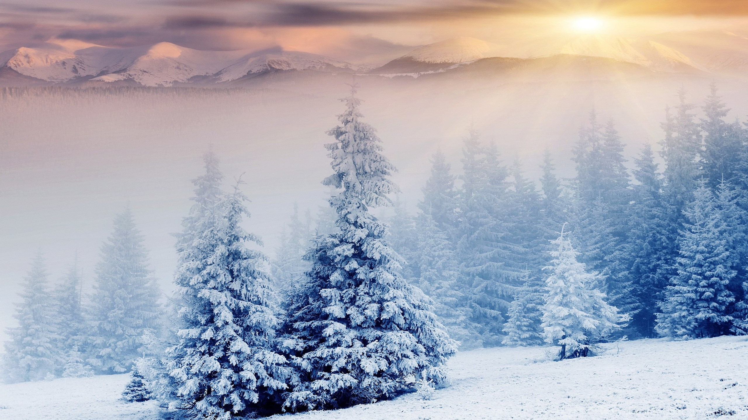 Beautiful Winter Wallpaper 17 Jpg Desktop Background