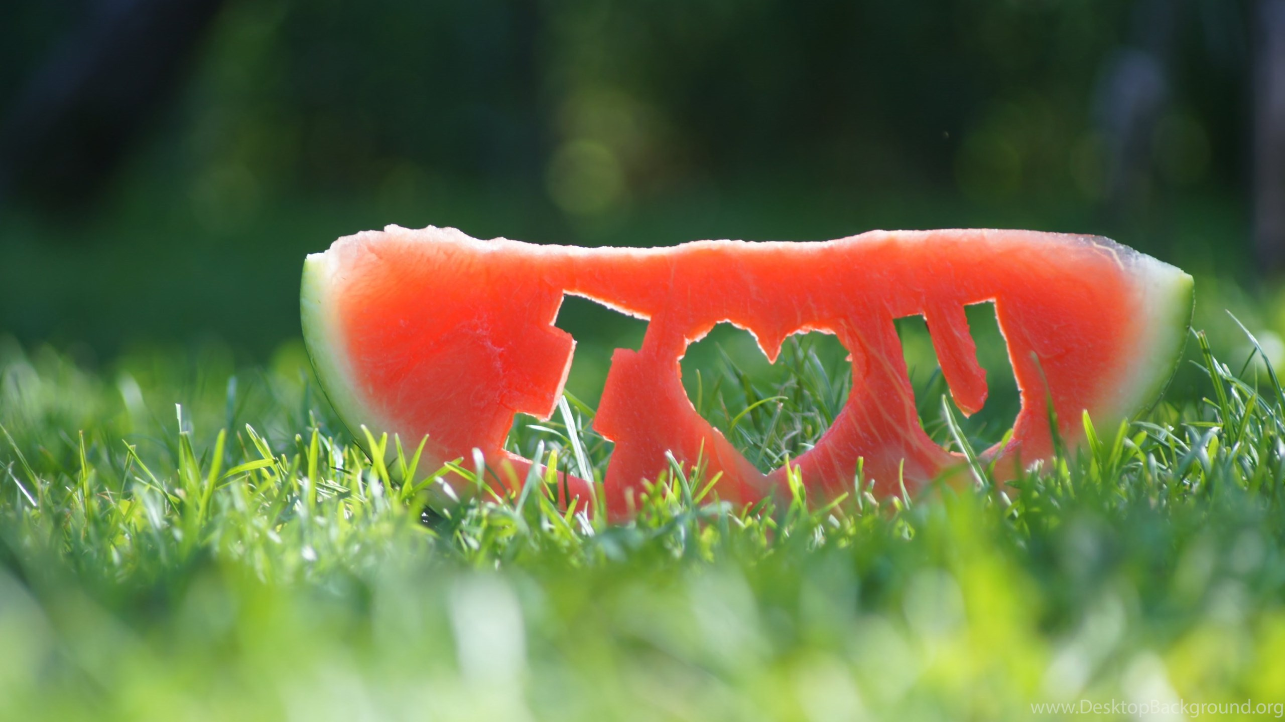 Watermelon I Love You Hd Wallpapers 4k Wallpapers Desktop Background