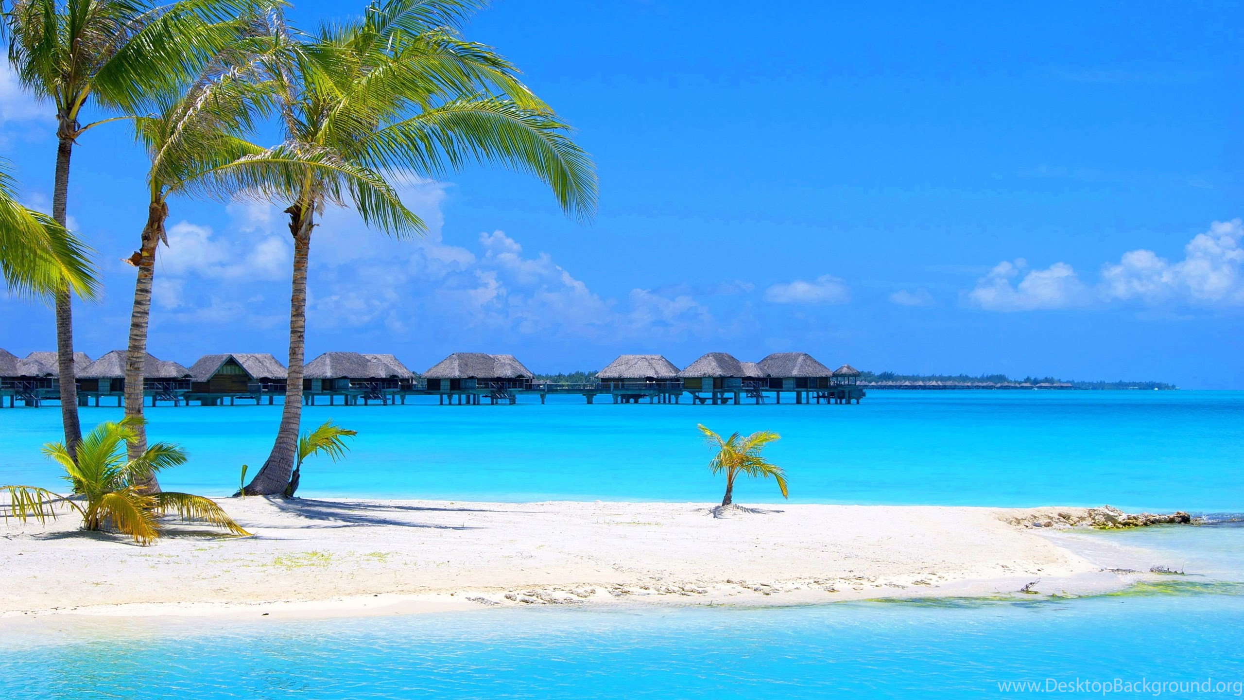 Most Beautiful Beach Hd Wallpapers Download Beach Images Free