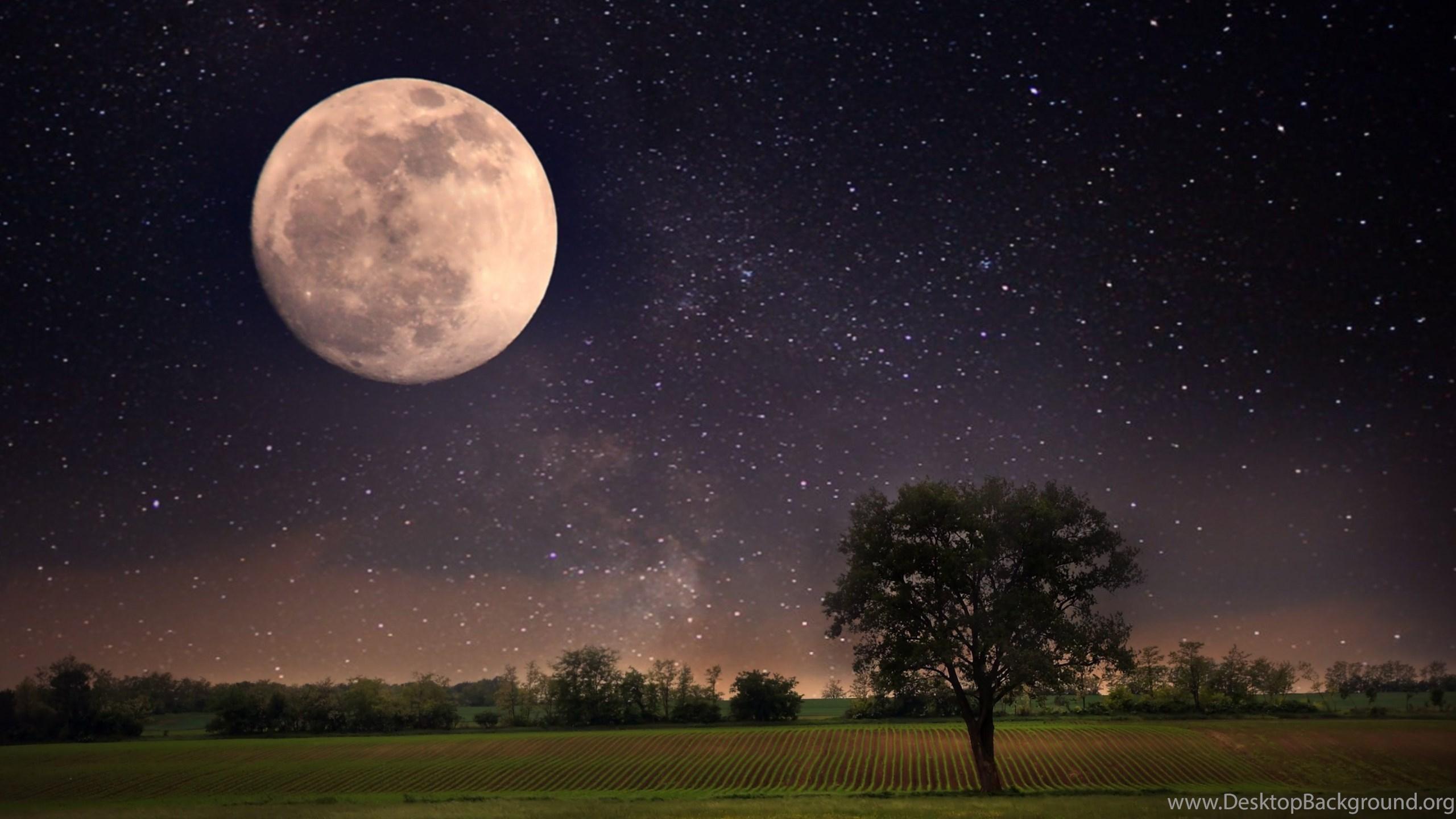 Moon Night Scene Wallpapers 4k 4096x2160 Resolution Wallpapers