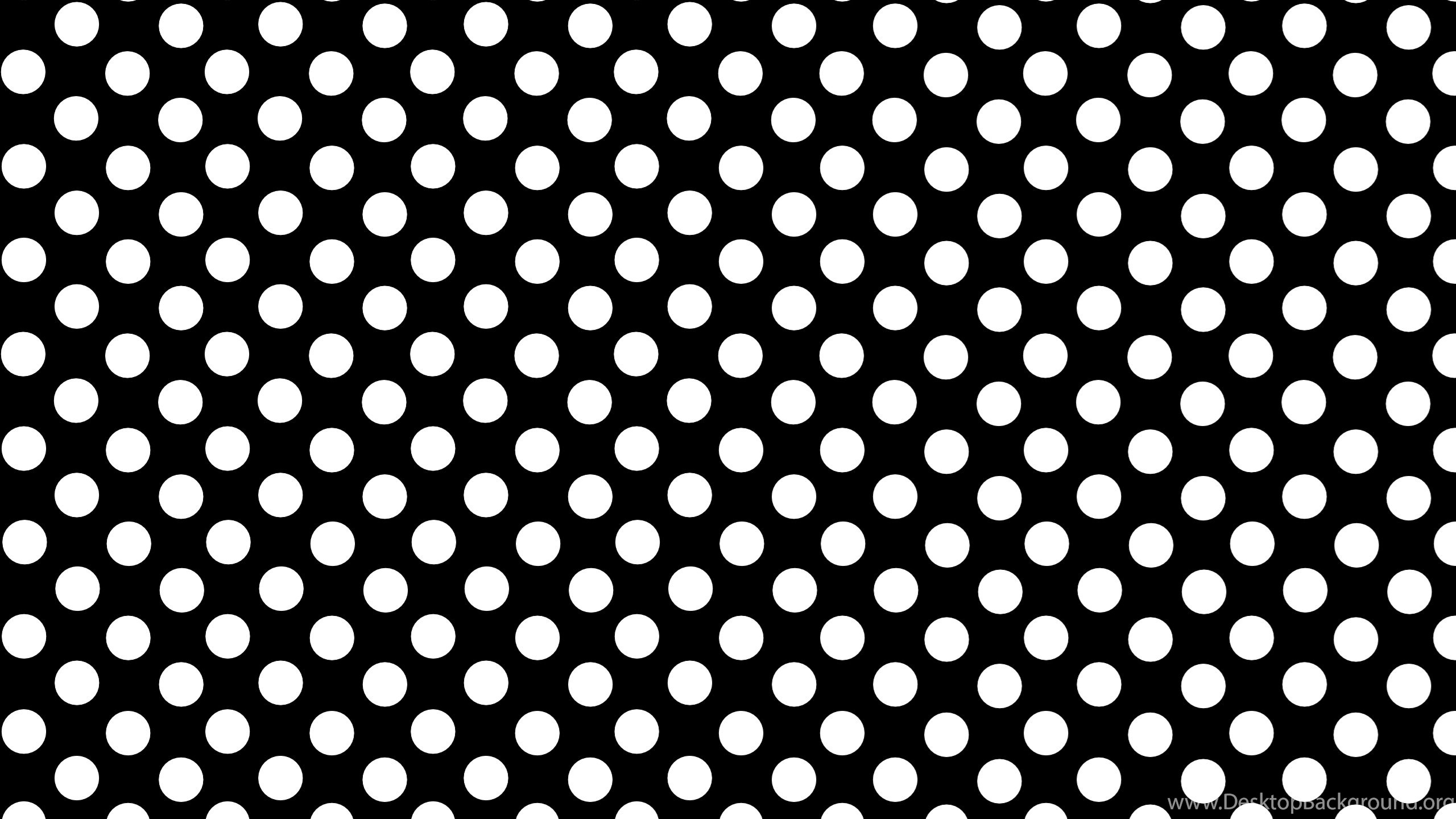 polka dot wallpapers border best hd wallpaper dots