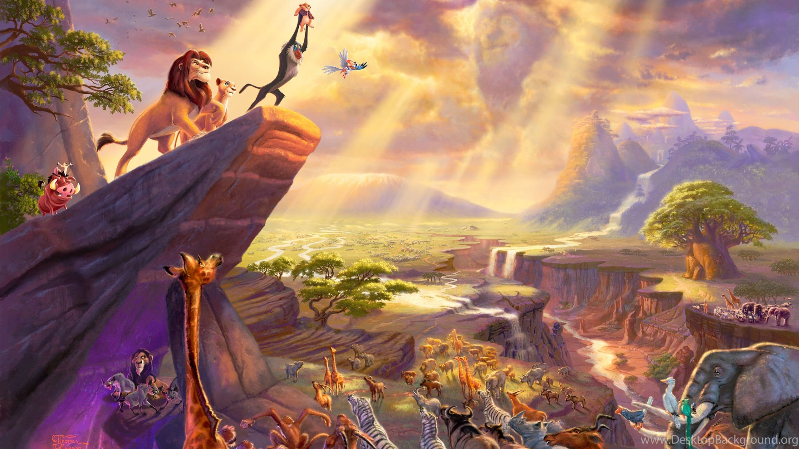 Lion King Cartoon Hd Wallpapers Desktop Background