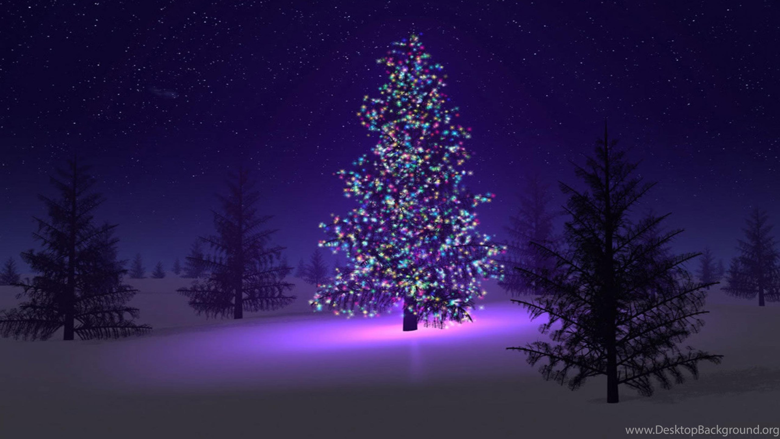 Christmas Tree In The Snow Wallpapers Desktop Background