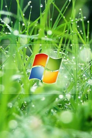 download mobile wallpaper brands grass logos microsoft free