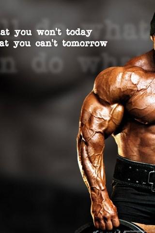 Wallpapers Bodybuilder Health Bodybuilding Hd Best