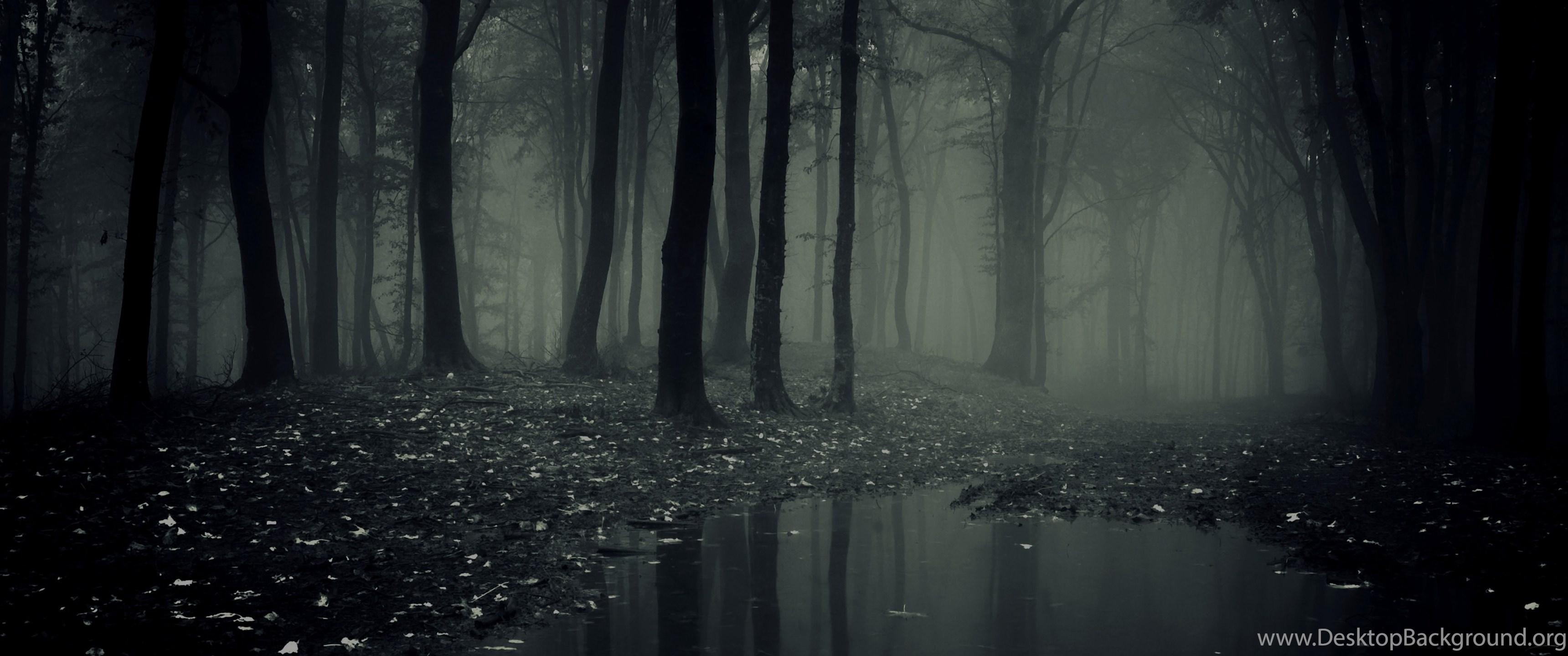Dark Forest Collection 43 Desktop Background