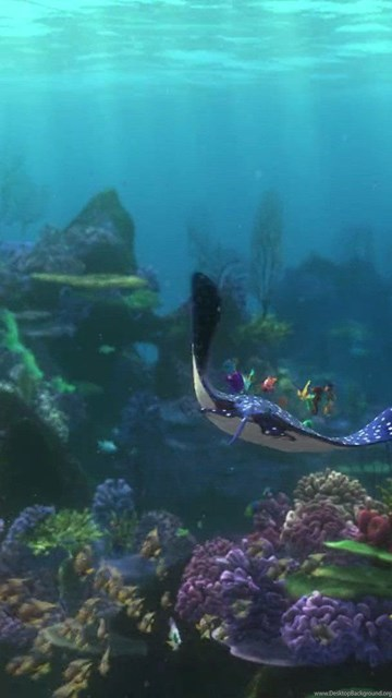 finding nemo animation underwater sea ocean tropical fish