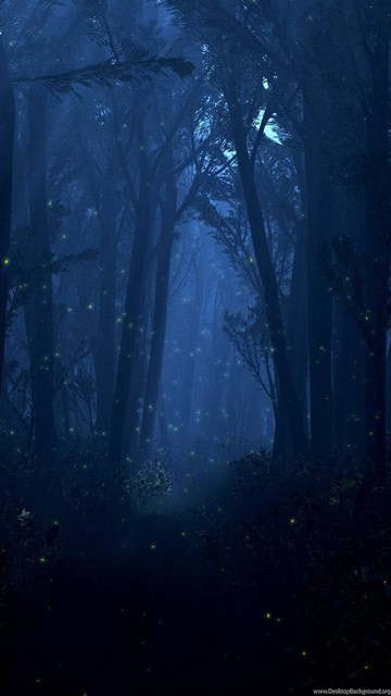 Fireflies At Night In The Forest Wallpapers » WallDevil ...