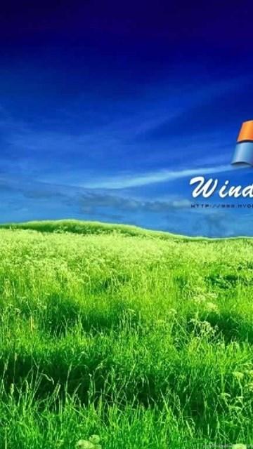 Windows xp wallpapers location wallpapers zone desktop background desktop background exif data voltagebd Images
