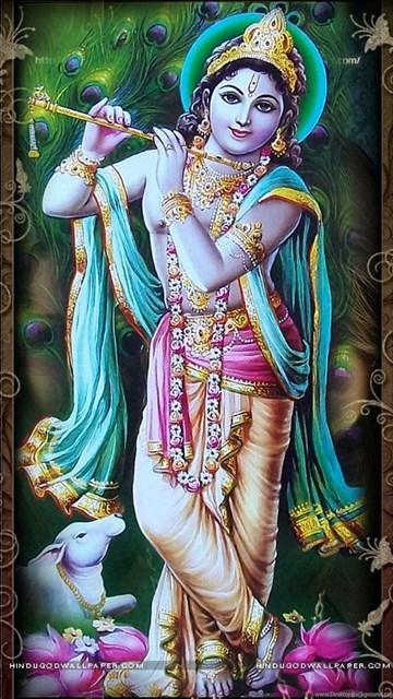 725587 jai shri krishna wallpapers
