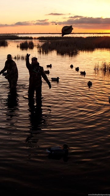 Duck hunting wallpapers hd wallpapers wide desktop background - Hunting wallpaper for android ...