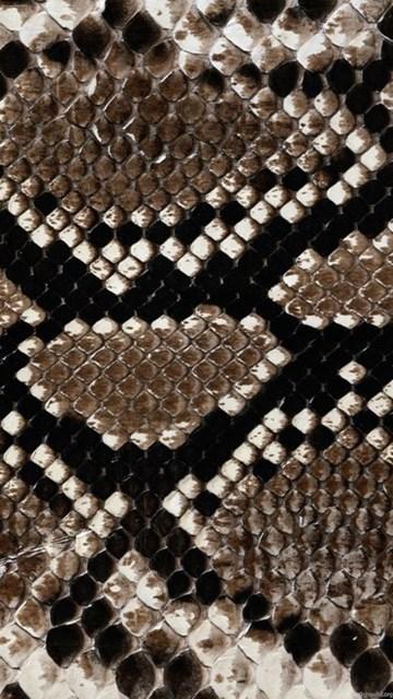 Snakeskin Texture Wallpapers Hd Hd Desktop Wallpapers