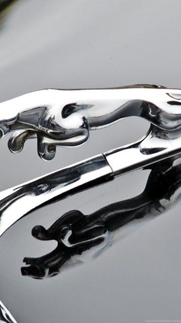 Jaguar Car Logo, Jaguar Wallpapers For Windows 7 ...