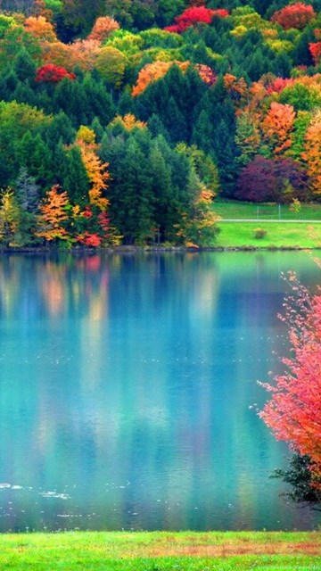 My Home Value >> Pretty Fall Wallpapers As Well As Fall Hd Wallpapers Hd Wallpapers ... Desktop Background