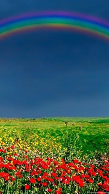 nature wallpapers rainbow on sky wallpapers desktop background