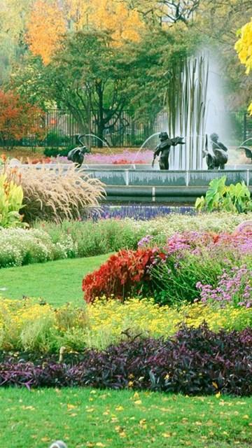 gardenflowershdwallpapersfreefordesktop HD