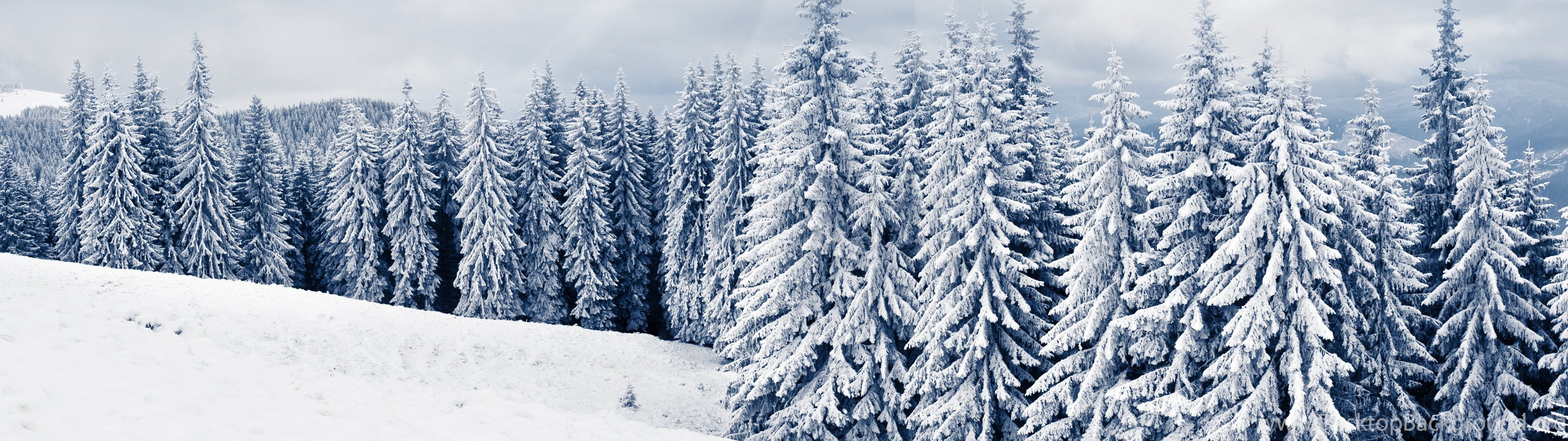 winter hd desktop wallpapers high definition