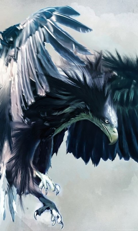 3d Eagle Wallpapers Hd X 1080x1920px 1920x1080 Hd Wallpapers