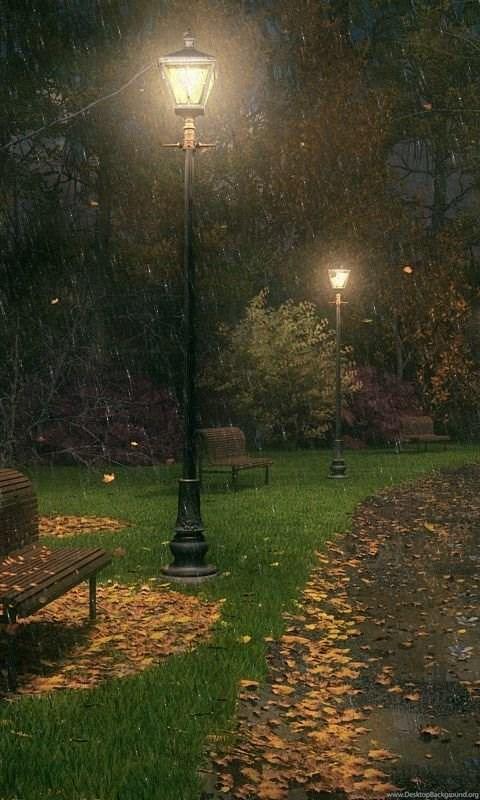 download free rainy night hd wallpapers desktop background