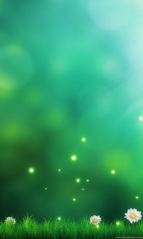 green nature flwoers backgrounds wallpapers hd download