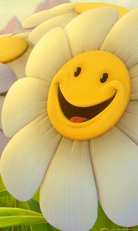 Cute Flowers Wallpapers Desktop Backgrounds Full Screen BACKGROUND