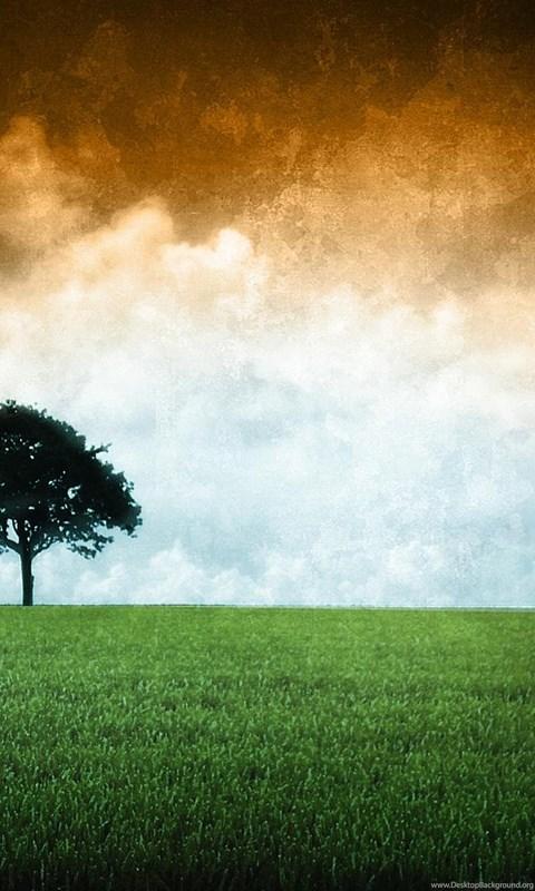 Indian Flag Hd Wallpapers Desktop Background