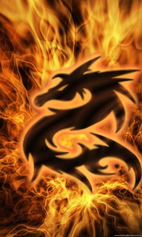 509662 jestingstock com animated fire lion