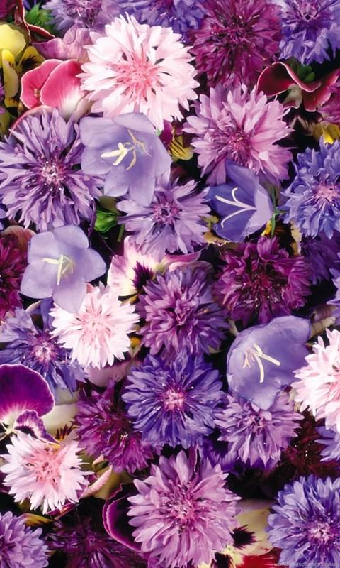 Ipad Wallpaper Floral