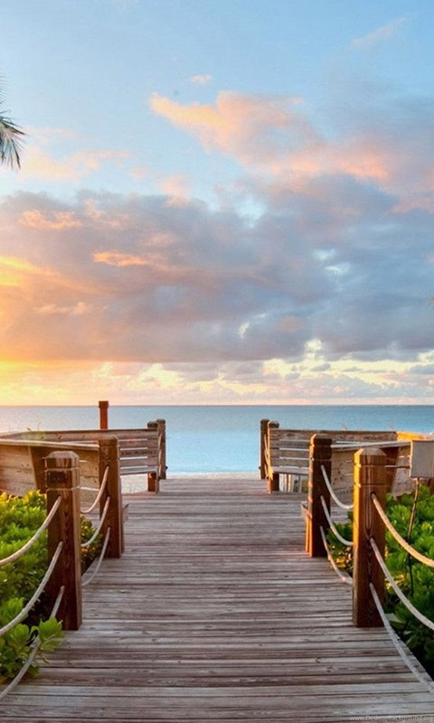 Tropical Summer Beach And View Of The Sea Bridge ...