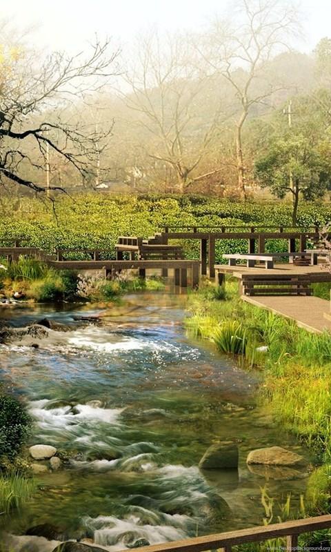 Zen Garden, Landscape,...
