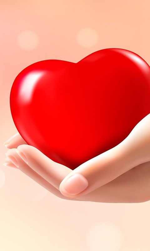 Heart In Hand Love Wallpapers Hd Free Download For Desktop Desktop
