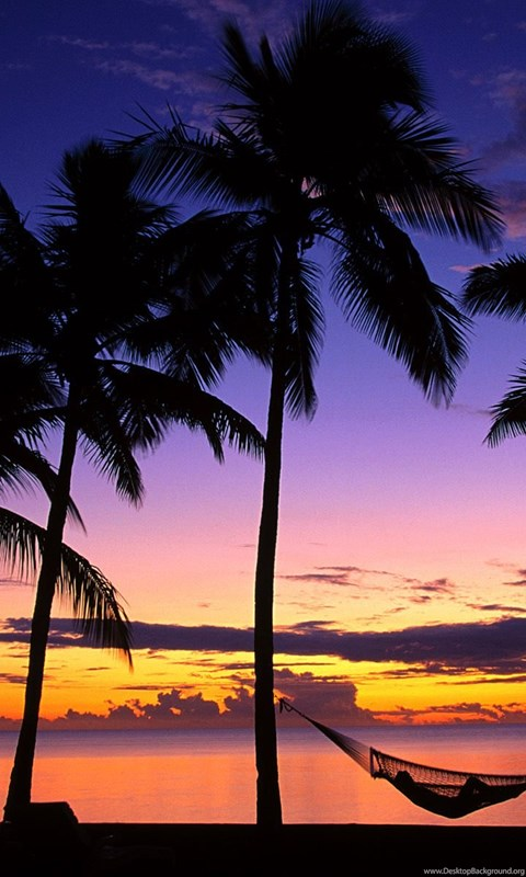 Tropical Island Beach Sunset Wallpaper Desktop Background