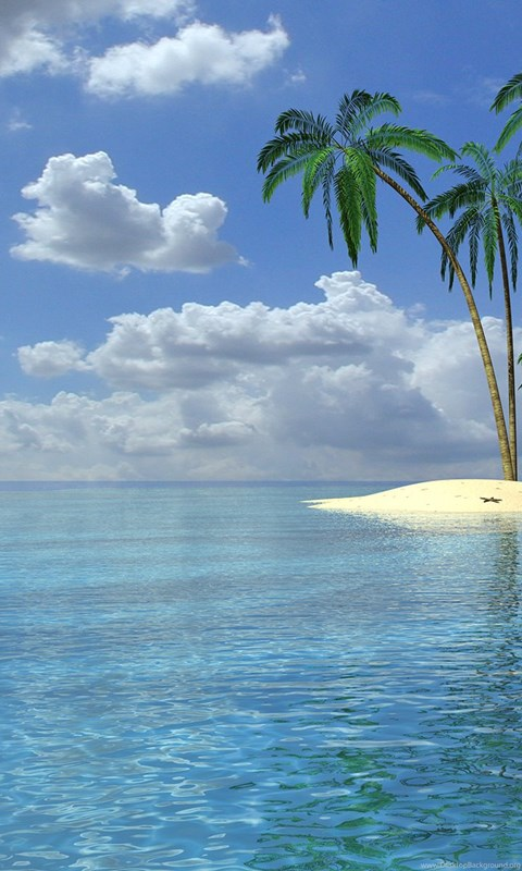 Wallpapers palm trees 3d beach wallpapers desktop desktop background - Palm tree wallpaper for android ...