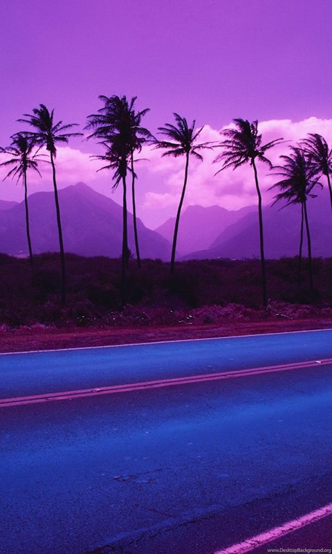 Wallpapers Gmail Coconut Trees Beach Purple 1920x1200