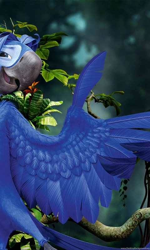 10 rio 2 movie hd wallpaper rio 2 movie backgroundsnew wallpapers android voltagebd Choice Image