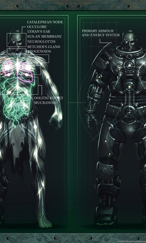 Space Marine Anatomy Wallpapers Desktop Background