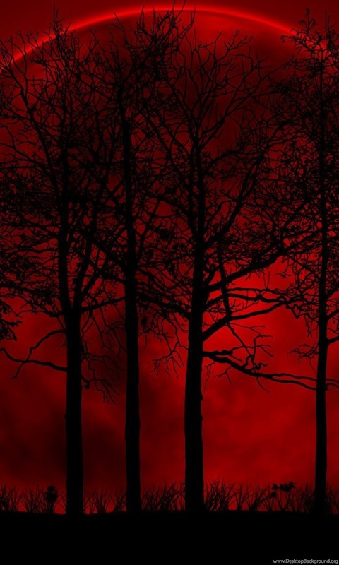 Tree Red Black Moon Darkness Backgrounds HD Wallpapers
