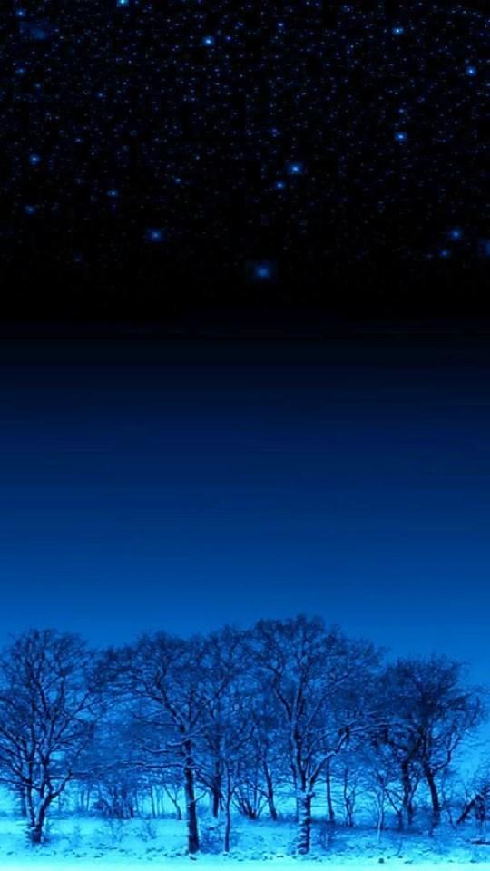 Wonderful Winter Night Wallpapers Desktop Background