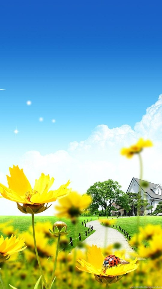 Summer dreamland wallpapers hq backgrounds hd wallpapers gallery android hd 540x960 360x640 voltagebd Choice Image