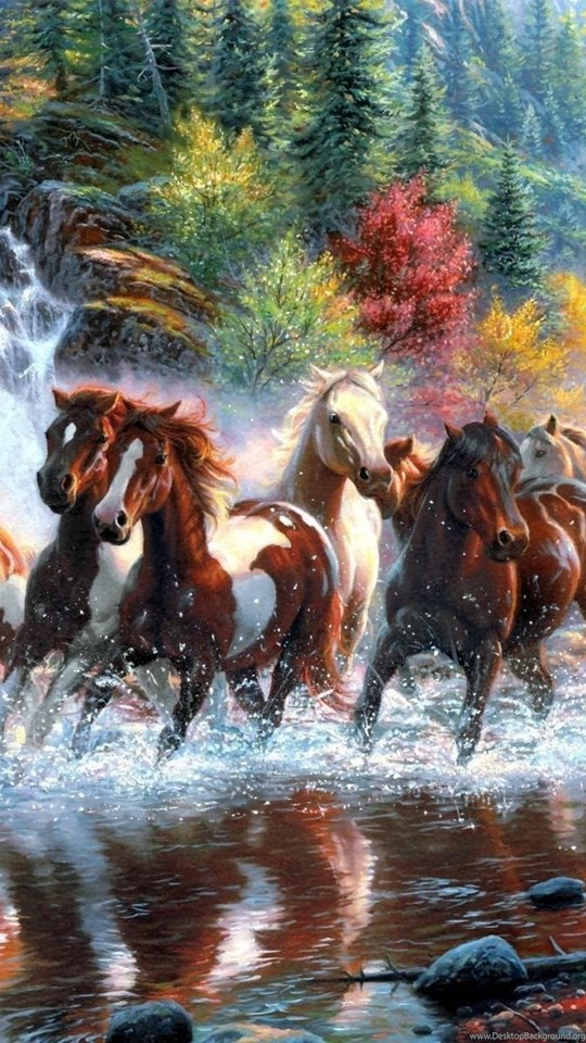 7 Horses Desktop Backgrounds Hd 1920x1200 Desktop Background