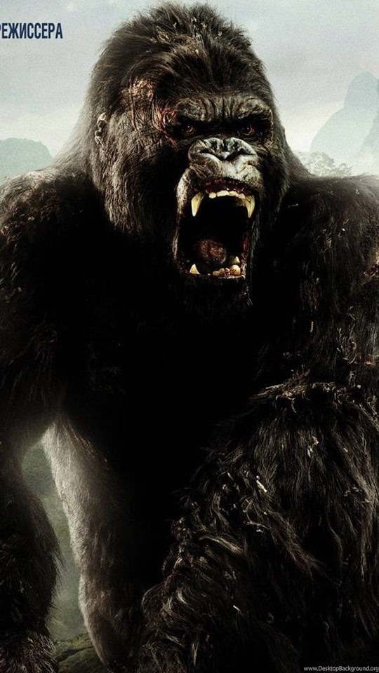 King kong wallpapers wallpapers cave desktop background - King kong 2005 hd wallpapers ...